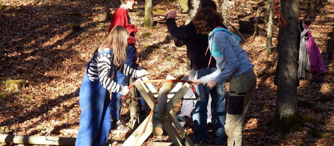Lernen und Arbeiten im Wald